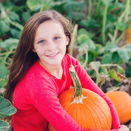 Pick-your-own pumpkins in Loudoun County at our Hamilton, Aldie, and Leesburg farms!